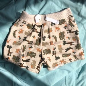 🎉5/$15🎉 Safari Animal Shorts